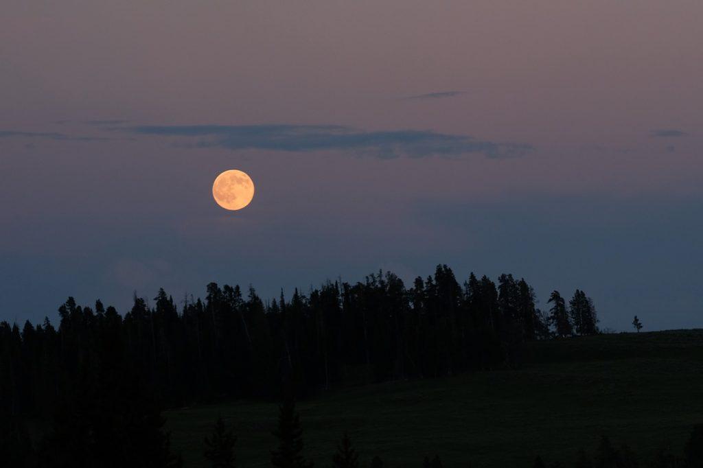 百人一首81番 「ほととぎす 鳴きつる方を ながむれば ただありあけの 月ぞ残れる」の意味と現代語訳