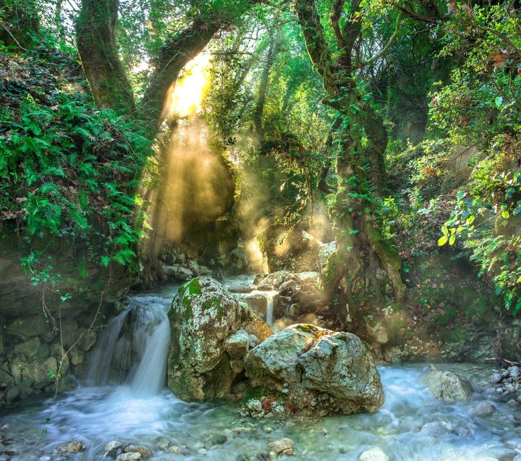 百人一首77番 「瀬をはやみ 岩にせかるる 滝川の われても末に あはむとぞ思ふ」の意味と現代語訳