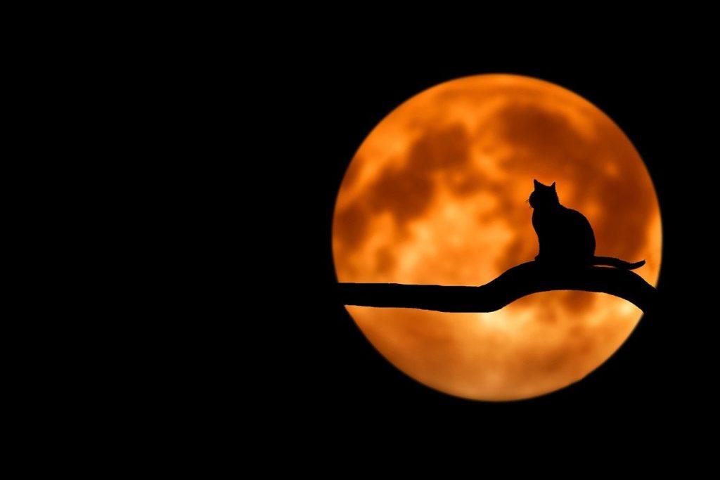 百人一首85番 「夜もすがら 物思ふころは 明けやらで 閨のひまさへ つれなかりけり」の意味と現代語訳